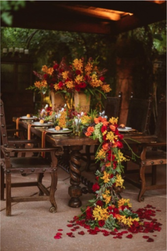 fall foliage event palapa